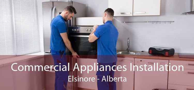 Commercial Appliances Installation Elsinore - Alberta