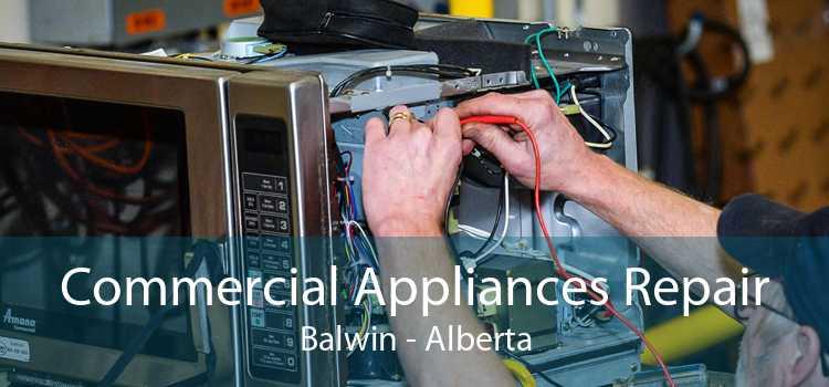 Commercial Appliances Repair Balwin - Alberta