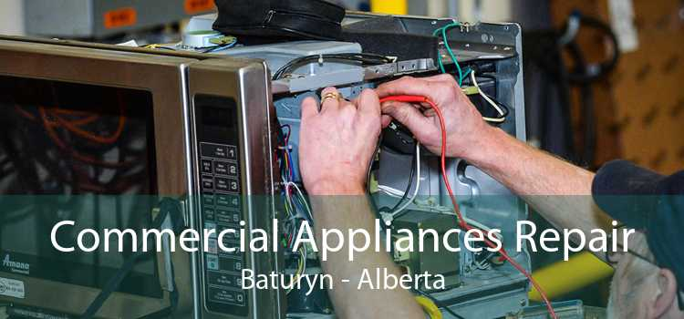 Commercial Appliances Repair Baturyn - Alberta