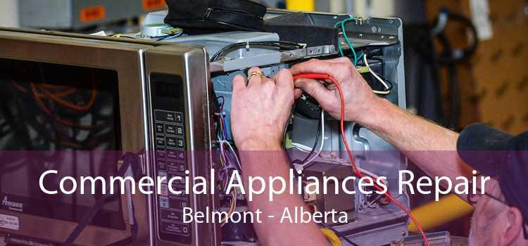 Commercial Appliances Repair Belmont - Alberta