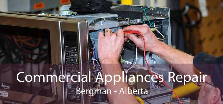 Commercial Appliances Repair Bergman - Alberta