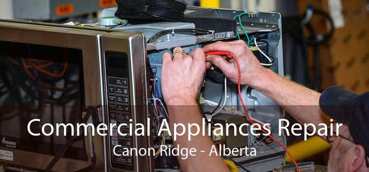 Commercial Appliances Repair Canon Ridge - Alberta