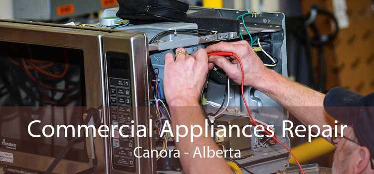 Commercial Appliances Repair Canora - Alberta