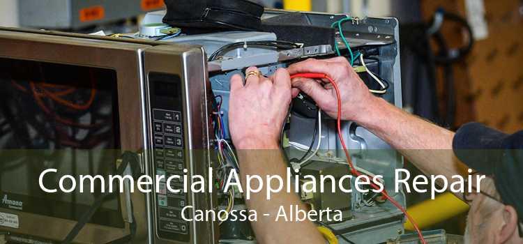 Commercial Appliances Repair Canossa - Alberta