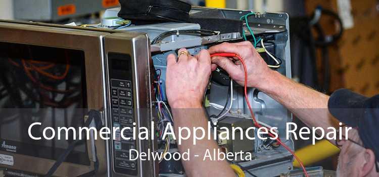 Commercial Appliances Repair Delwood - Alberta