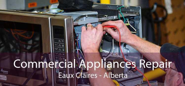 Commercial Appliances Repair Eaux Claires - Alberta