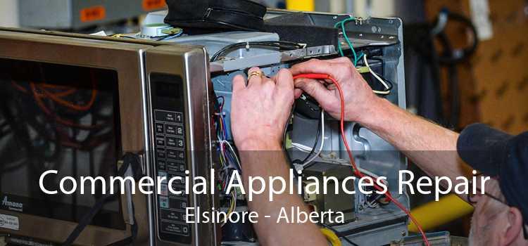 Commercial Appliances Repair Elsinore - Alberta