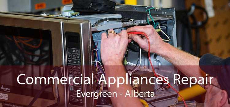 Commercial Appliances Repair Evergreen - Alberta