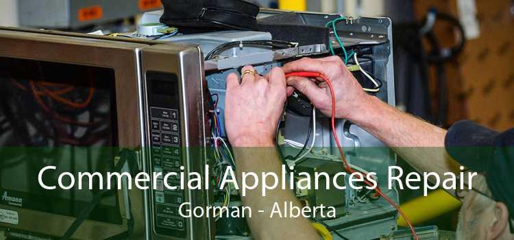 Commercial Appliances Repair Gorman - Alberta