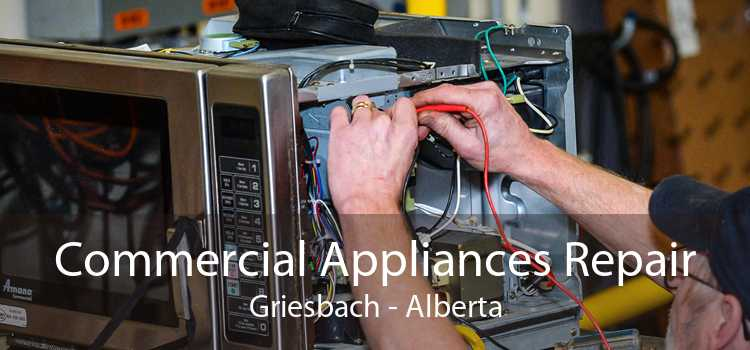 Commercial Appliances Repair Griesbach - Alberta