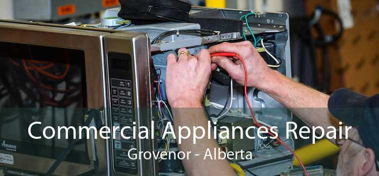 Commercial Appliances Repair Grovenor - Alberta