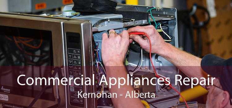 Commercial Appliances Repair Kernohan - Alberta