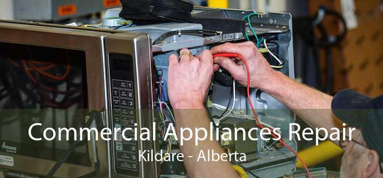 Commercial Appliances Repair Kildare - Alberta
