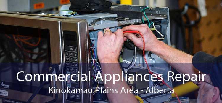 Commercial Appliances Repair Kinokamau Plains Area - Alberta