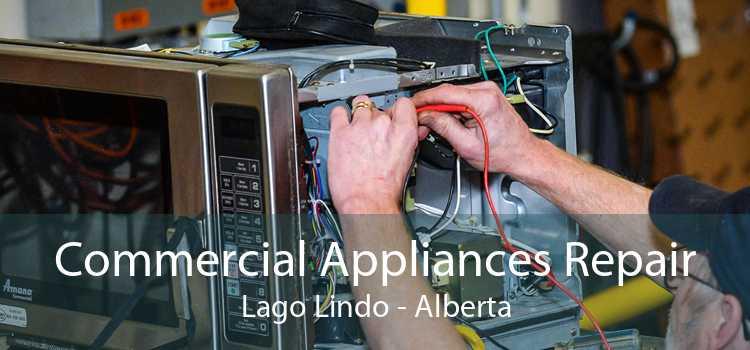 Commercial Appliances Repair Lago Lindo - Alberta