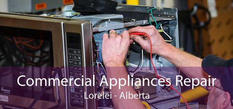 Commercial Appliances Repair Lorelei - Alberta
