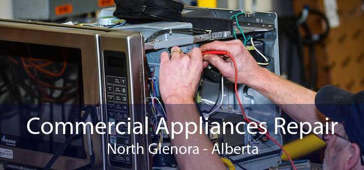 Commercial Appliances Repair North Glenora - Alberta