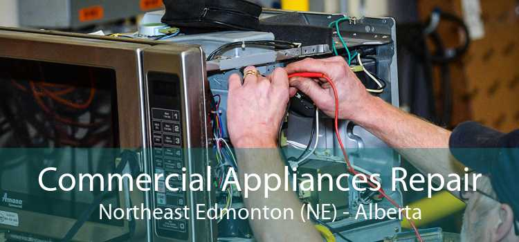 Commercial Appliances Repair Northeast Edmonton (NE) - Alberta