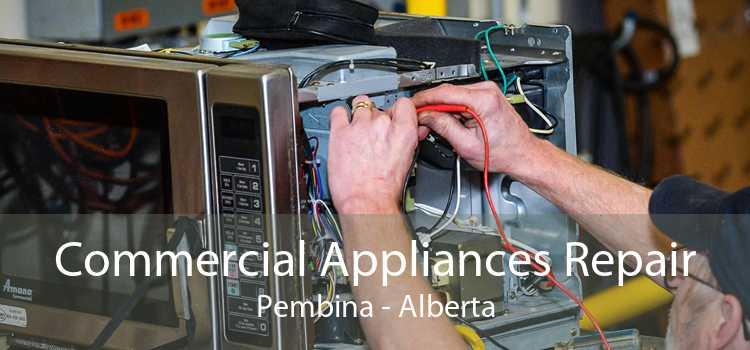 Commercial Appliances Repair Pembina - Alberta