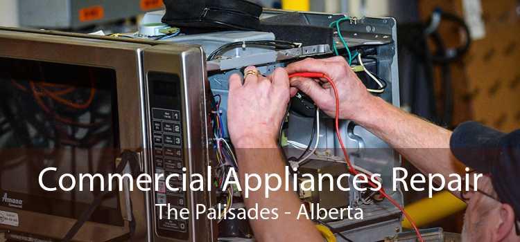 Commercial Appliances Repair The Palisades - Alberta