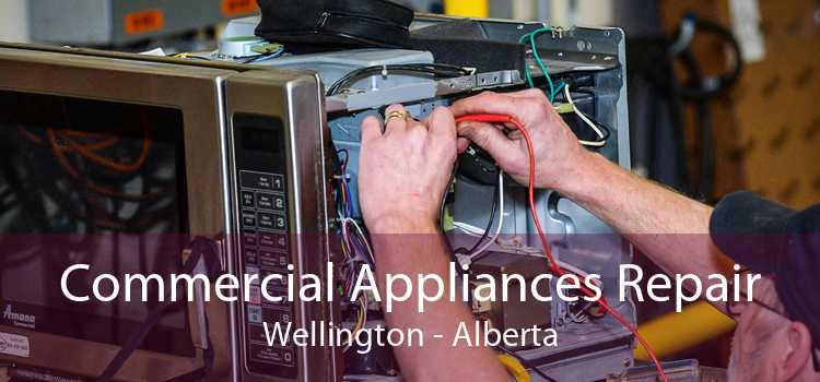 Commercial Appliances Repair Wellington - Alberta