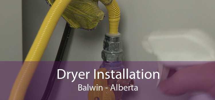 Dryer Installation Balwin - Alberta