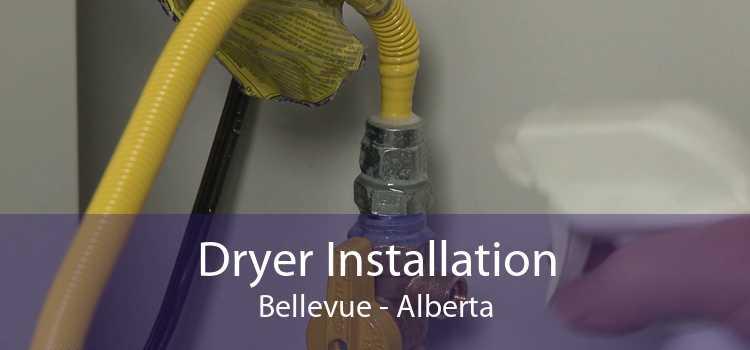 Dryer Installation Bellevue - Alberta