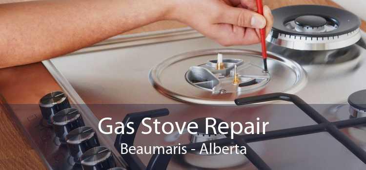 Gas Stove Repair Beaumaris - Alberta