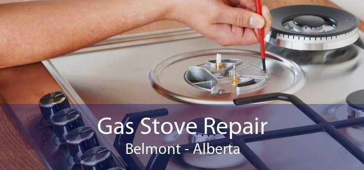Gas Stove Repair Belmont - Alberta