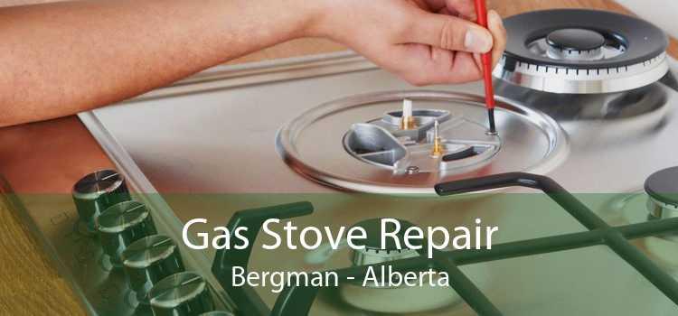 Gas Stove Repair Bergman - Alberta