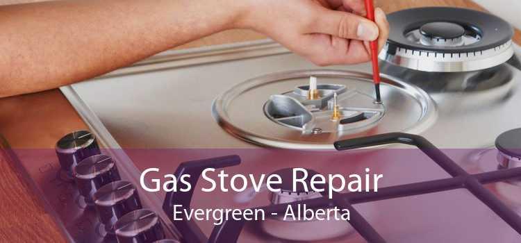 Gas Stove Repair Evergreen - Alberta