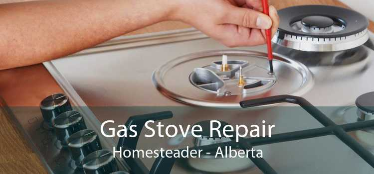 Gas Stove Repair Homesteader - Alberta