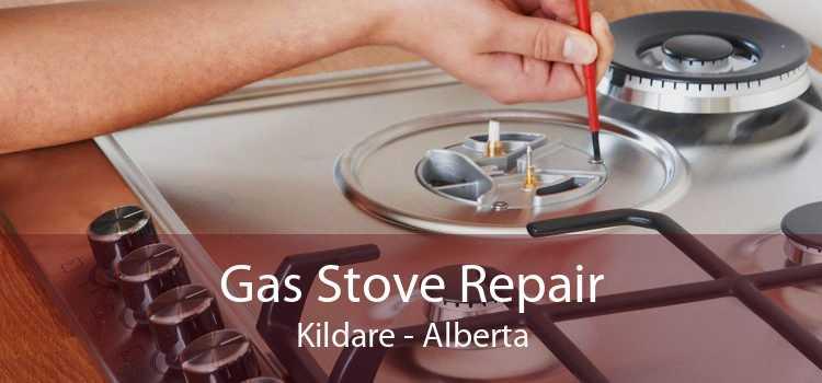 Gas Stove Repair Kildare - Alberta