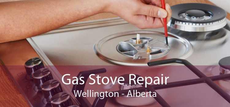 Gas Stove Repair Wellington - Alberta