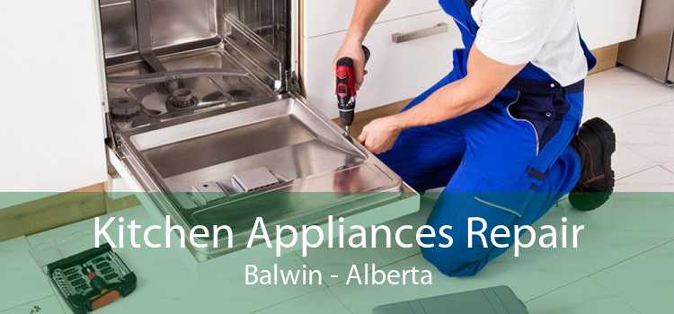 Kitchen Appliances Repair Balwin - Alberta