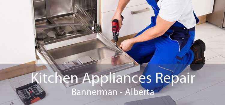 Kitchen Appliances Repair Bannerman - Alberta
