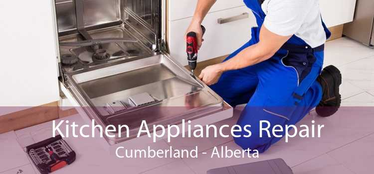 Kitchen Appliances Repair Cumberland - Alberta