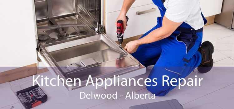 Kitchen Appliances Repair Delwood - Alberta