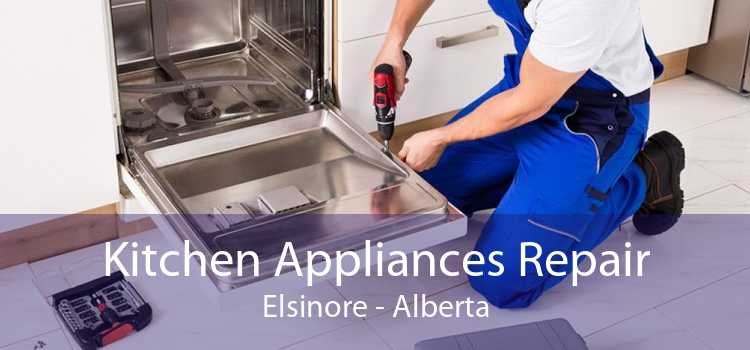 Kitchen Appliances Repair Elsinore - Alberta