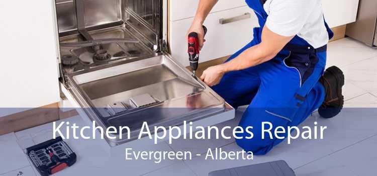 Kitchen Appliances Repair Evergreen - Alberta
