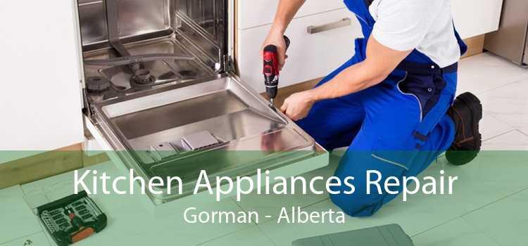 Kitchen Appliances Repair Gorman - Alberta