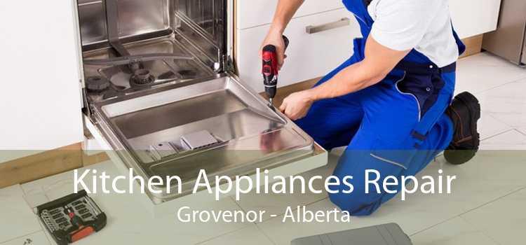 Kitchen Appliances Repair Grovenor - Alberta