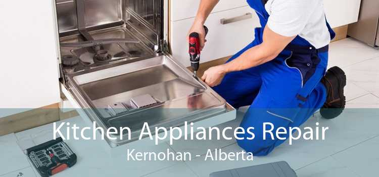 Kitchen Appliances Repair Kernohan - Alberta