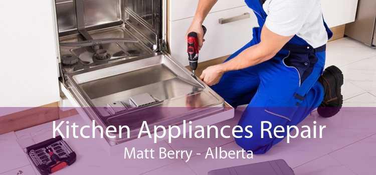 Kitchen Appliances Repair Matt Berry - Alberta