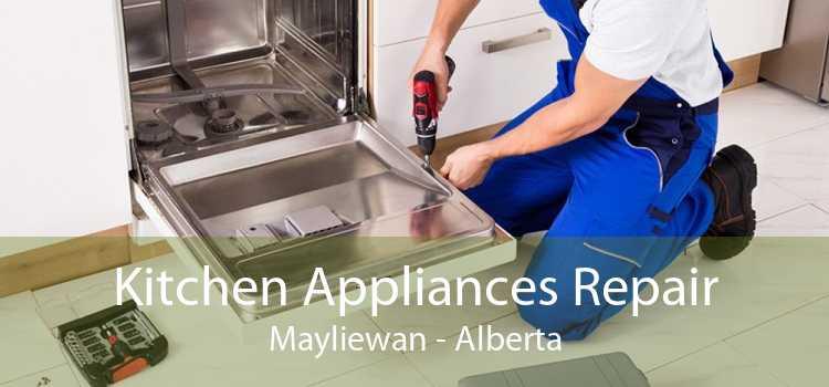Kitchen Appliances Repair Mayliewan - Alberta