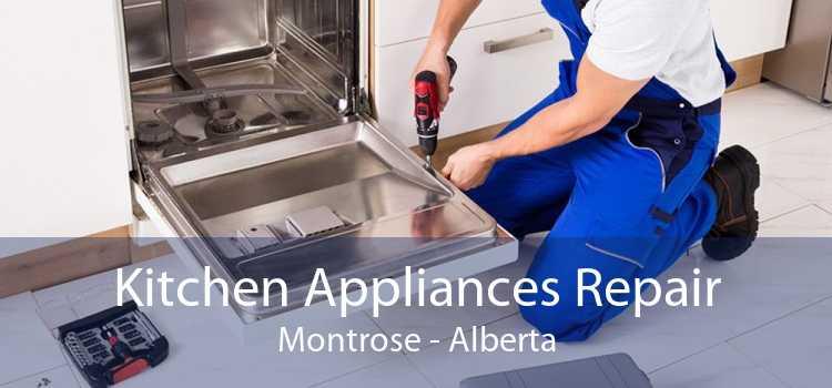Kitchen Appliances Repair Montrose - Alberta