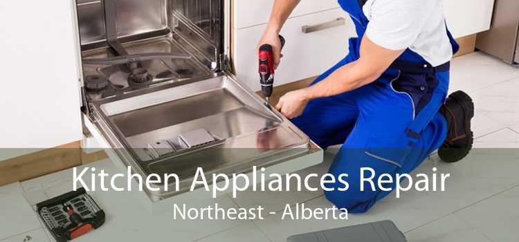 Kitchen Appliances Repair Northeast - Alberta