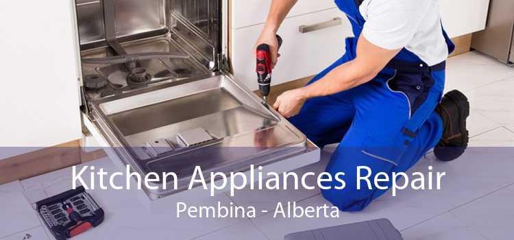 Kitchen Appliances Repair Pembina - Alberta