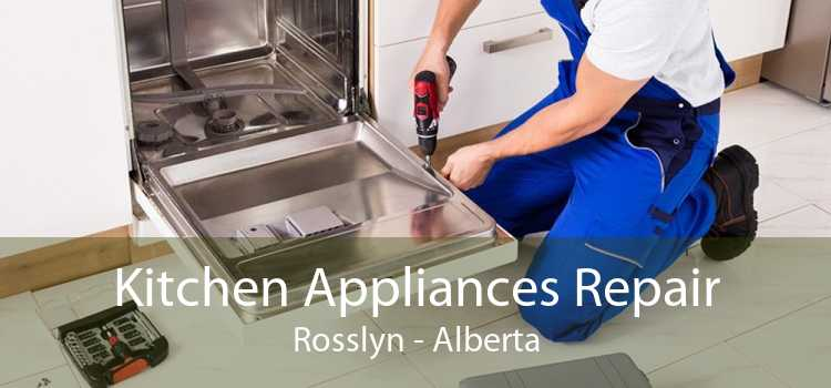 Kitchen Appliances Repair Rosslyn - Alberta
