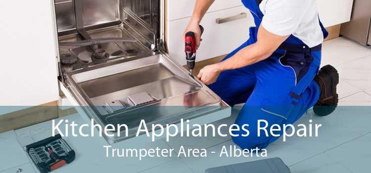 Kitchen Appliances Repair Trumpeter Area - Alberta